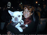Bulldog! - Who let the dogs out?! woof, woof, woof, woof.